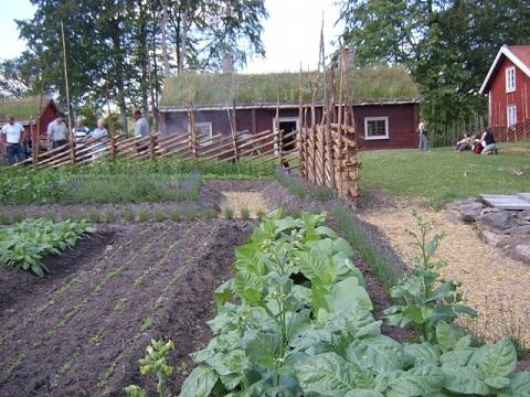 農園リゾートで地域活性化目指す、KNT-CT