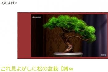 tenこれ見よがしに松の盆栽