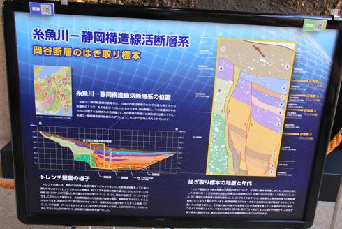 産総研地質標本館2016-4