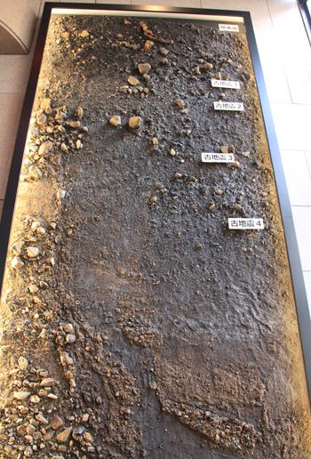 産総研地質標本館2016-5