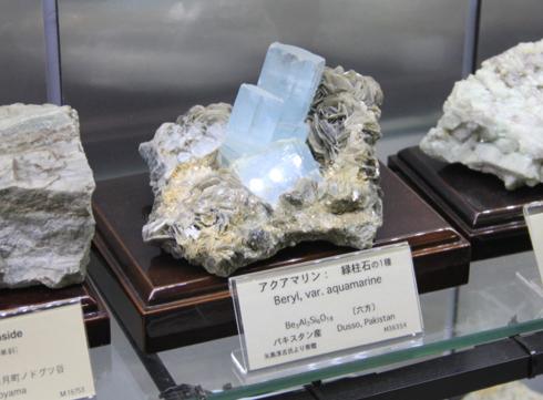 産総研地質標本館2016-9