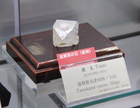 産総研地質標本館2016-10