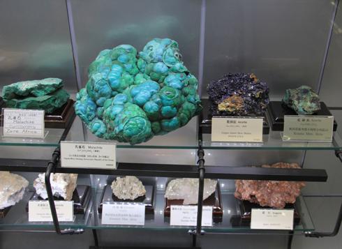 産総研地質標本館2016-12