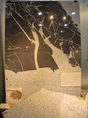 産総研地質標本館2016-15
