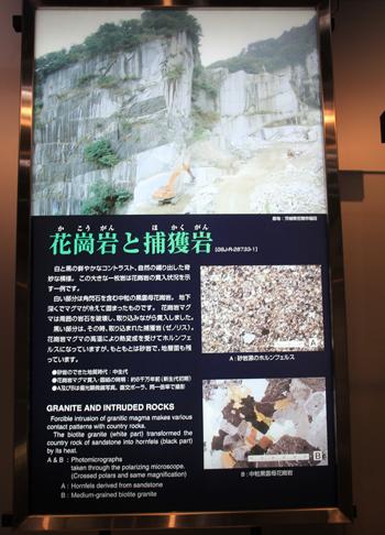 産総研地質標本館2016-16