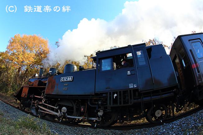 20121125多田羅5D3