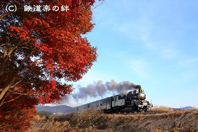 20121125北山5D3
