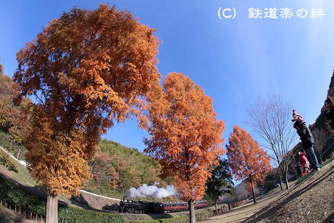 20121125茂木5D2
