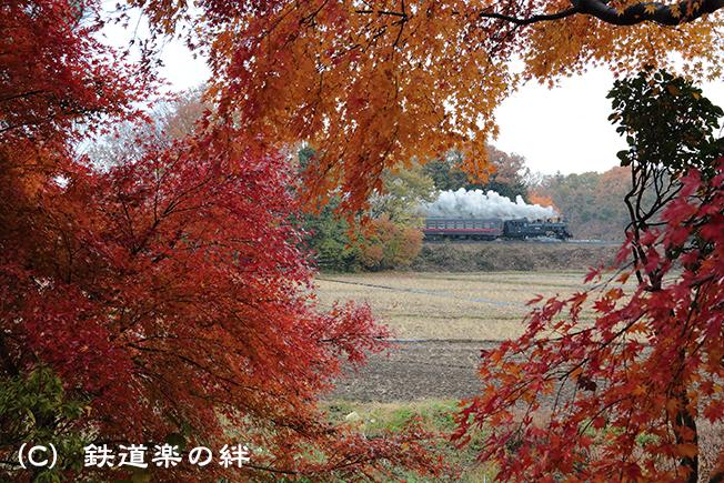 20121201折本5D3
