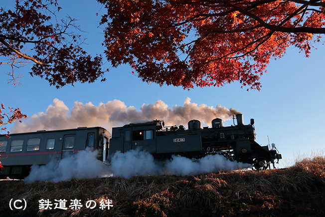 20121201北山5D3