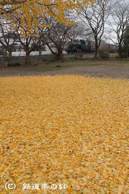 20121201北真岡5D3