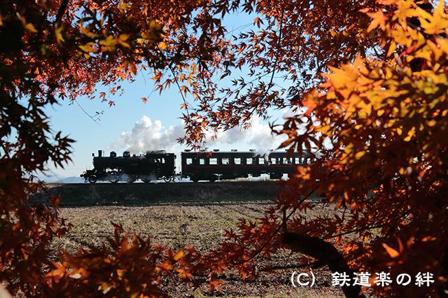 20121208真岡5D3