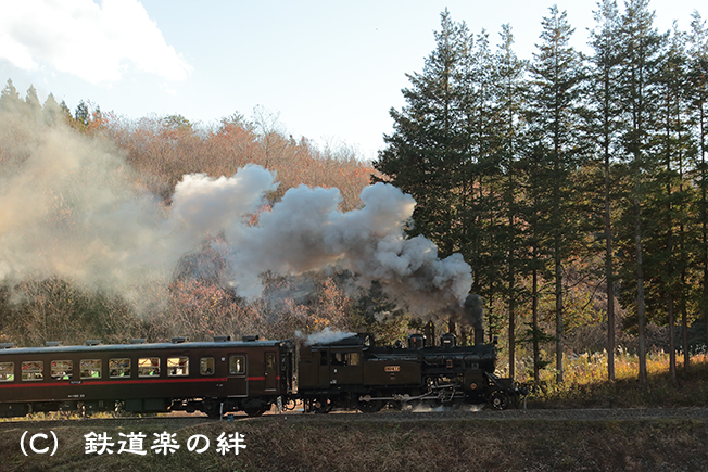 20121208天矢場035D3