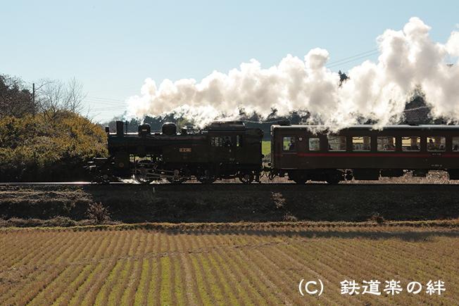 20121209笹原田5D3