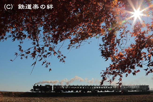 20121209真岡015D3