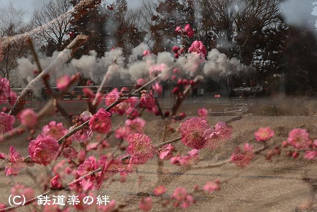 20130302折本025D3