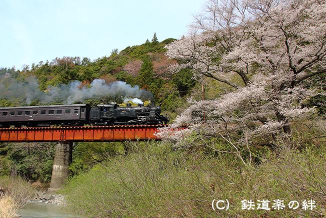 20130323笹間川015D3