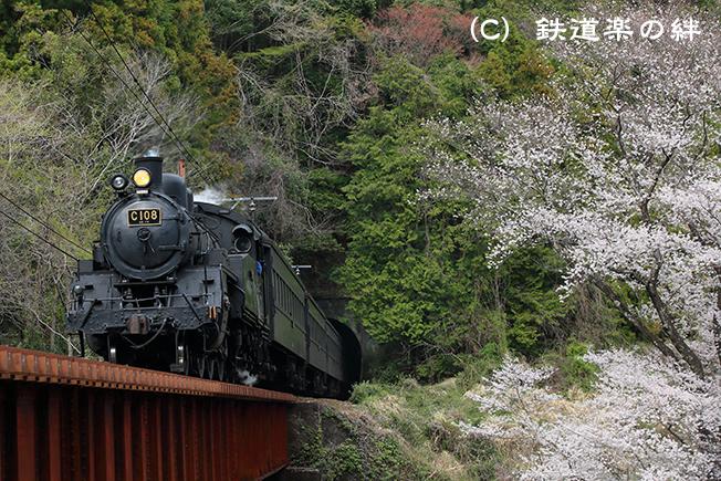 20130323笹間川055D3