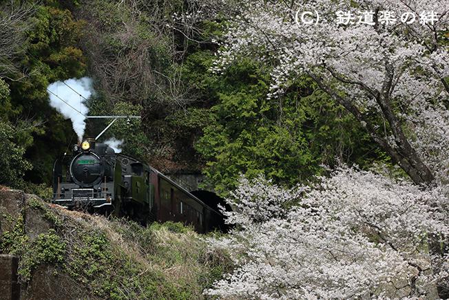 20130323笹間川045D3