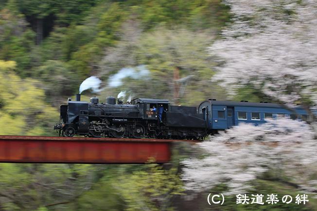 20130323笹間川065D3