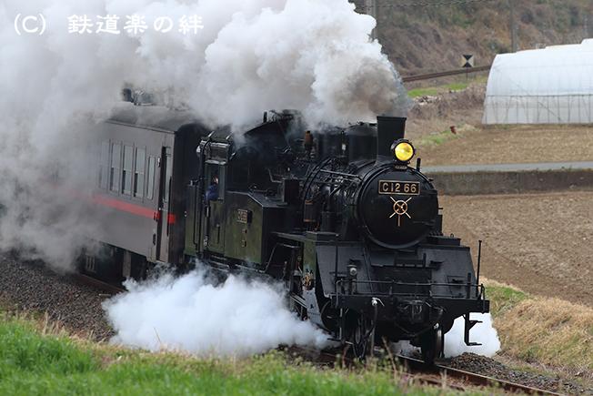 20130324笹原田5D3
