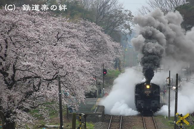 20130330久下田025D3