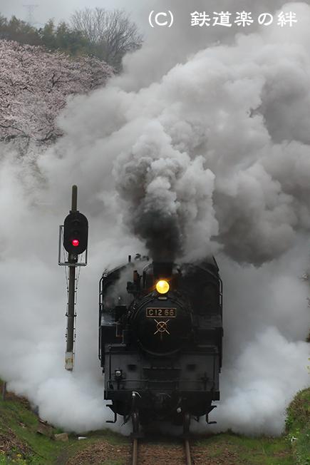 20130330久下田075D3
