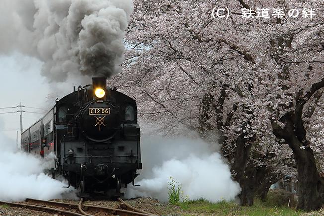20130330久下田105D3