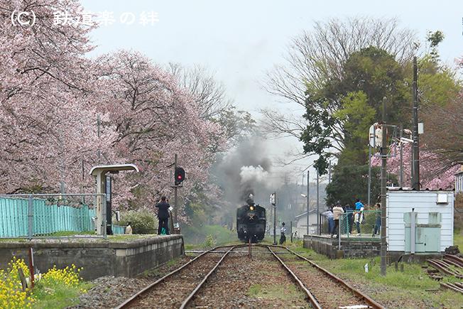 20130406久下田015D3