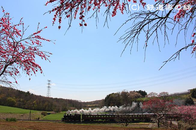 20130413笹原田5D3