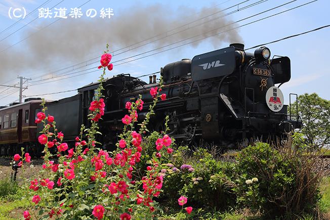 20130623小前田5D3