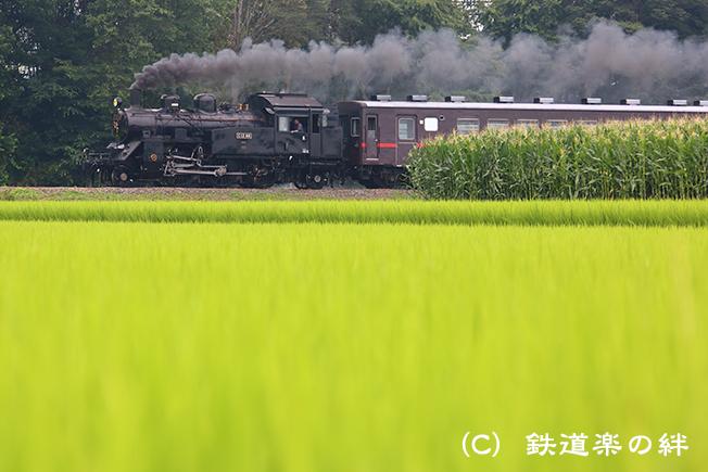 20130713真岡5D3