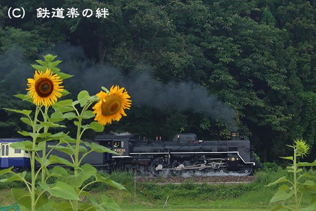 20130810野沢5D3