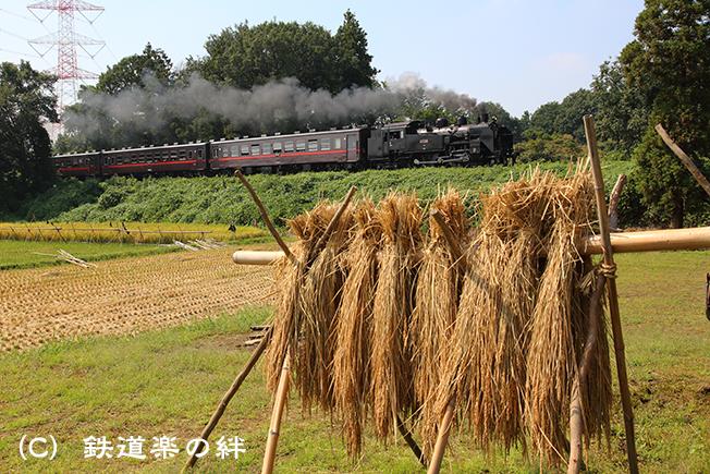 20130921折本5D3