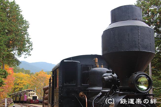 20161022赤沢215D3