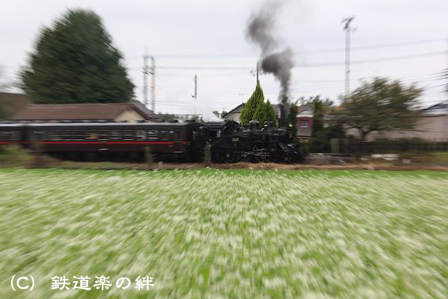 20131006寺内025D3