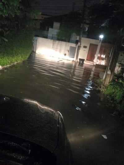 kozui 洪水