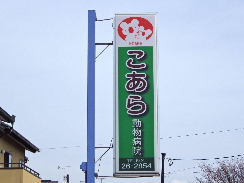 USER5143.jpg