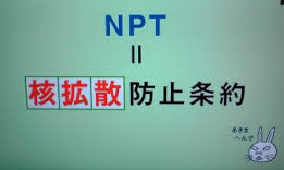 npt-1.jpg