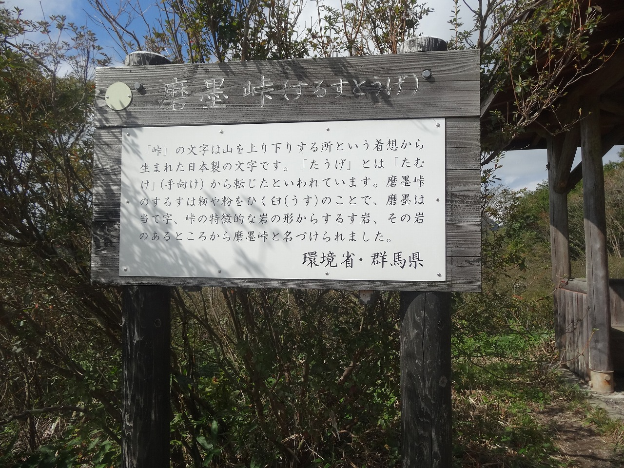 DSC03378.jpg