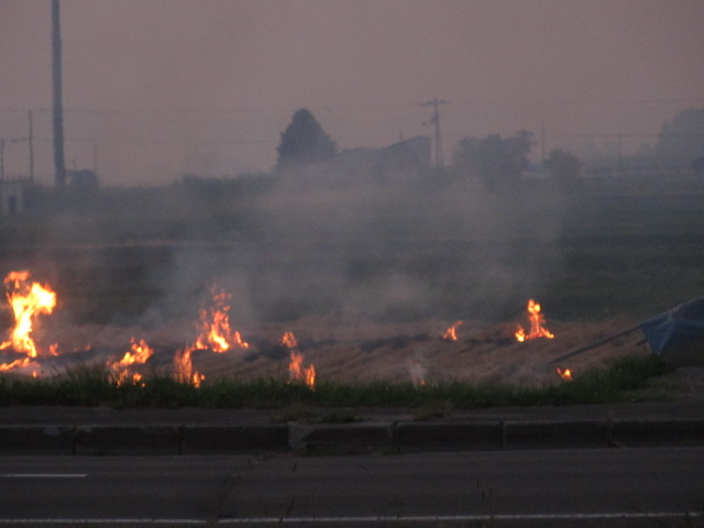 野焼き 002