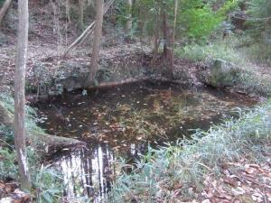 佐久良城/御馬洗いの池