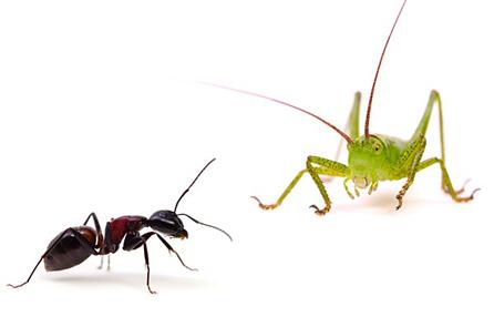蟋蟀在戸(きりぎりすとにあり)