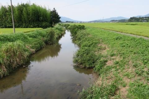 台風7号の恋瀬川。考案寺橋(片野地区)②