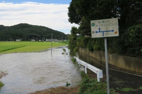 台風7号の恋瀬川。考案寺橋(片野地区)⑧