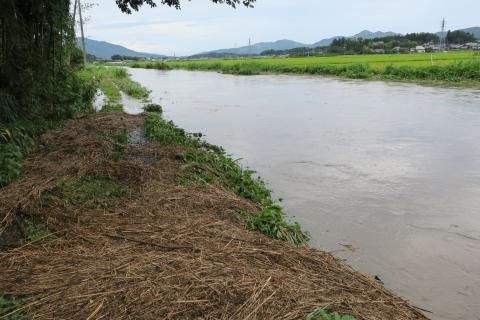 台風7号の恋瀬川。考案寺橋(片野地区)⑨