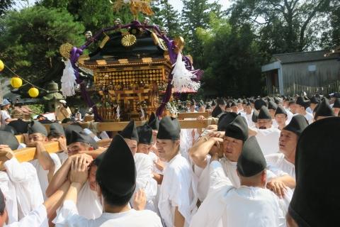 平成28年度「大神輿渡御」 (2)
