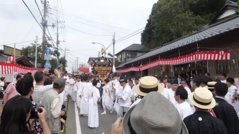 平成28年度「大神輿渡御」 (8)
