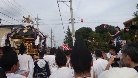 平成28年度「大神輿渡御」 (41)
