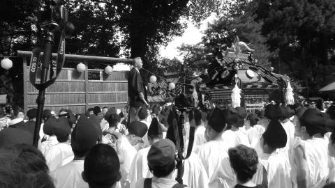 平成28年度「大神輿渡御」 (1)